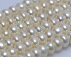 Colier de perle blanche | 107