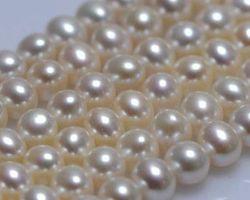 Colier de perle blanche | 111