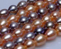 Colier de perle blanche/rose/lavande | 114
