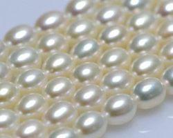 Colier de perle blanche/rose/lavande | 122