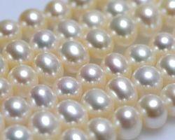 Colier de perle blanche/lavande/multi-couleur